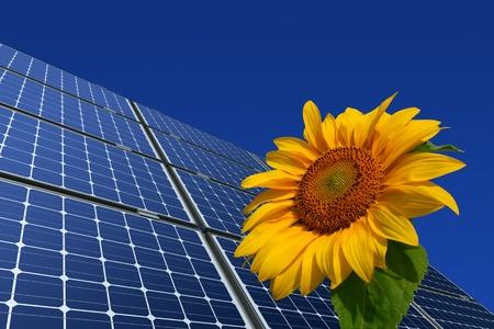 モノラル結晶の太陽電池パネルと青い背景のヒマワリ