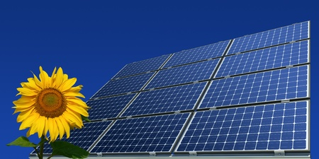 Mono-crystalline solar panels and sunflower against a blue background