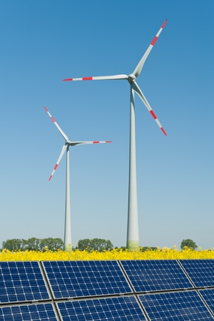 Solar panels and wind turbines in a rapeseed field photo