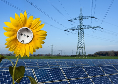 monocrystalline: Solar park, sunflower with socket and power line Stock Photo