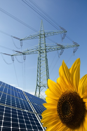 monocrystalline: Solar panels, sunflower and utility pole with wires