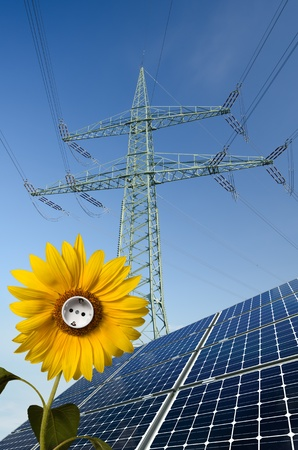 Solar panels, sunflower with socket and utility pole Stock Photo