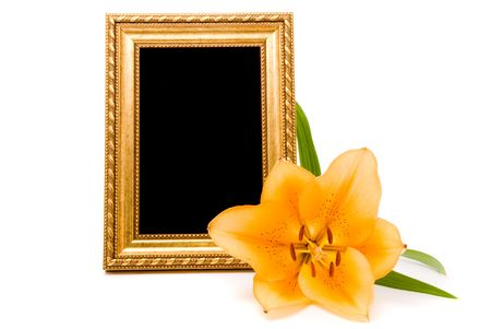 Yellow lily and gold frame on a white background photo