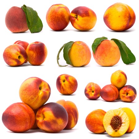Juicy nectarines set photo