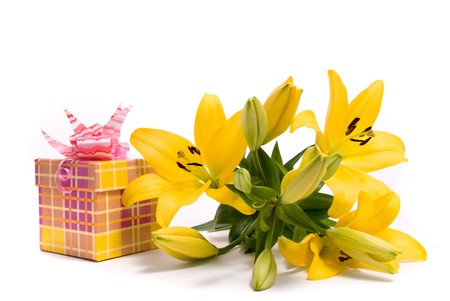 Yellow lily and gift box on a white background photo