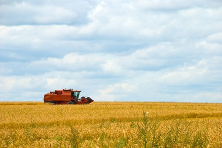 combine harvester working on a wheat crop Stock Photo - 7672646