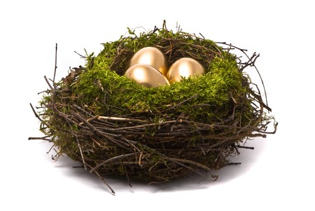 Golden eggs in a nest photo