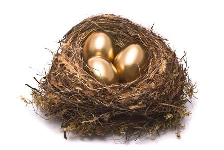 gniazdo jaj: ZÅ'ota jaj w gniazdo Zdjęcie Seryjne