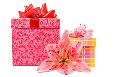 Pink lily and gift boxes on a white background photo