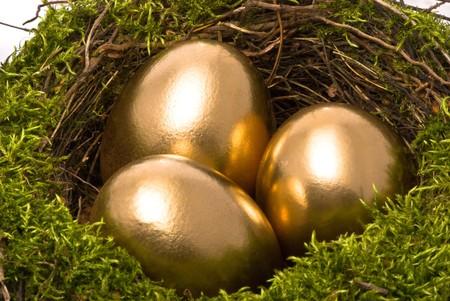 huevos de oro: Oro huevos en un nido