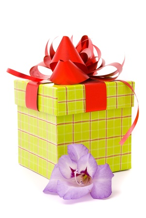 Beautiful gladiolus and gift box on a white background.  photo