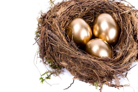 Three golden eggs in the nest isolated on white background photo