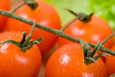 Closeup of cherry tomatoes photo