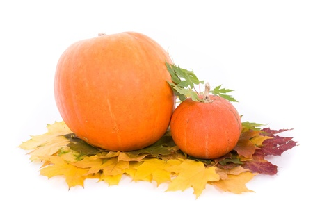 pumpkin border: Pumpkins with fall leaves on white background