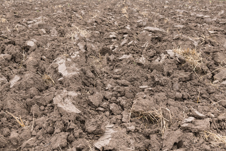 Preparation of soil for cultivation or earth background used for gardening and agriculture. Reklamní fotografie