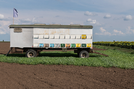 Detail mobile beehive on truck wagon with colorful panels on sunny day in summertime. Stock Photo