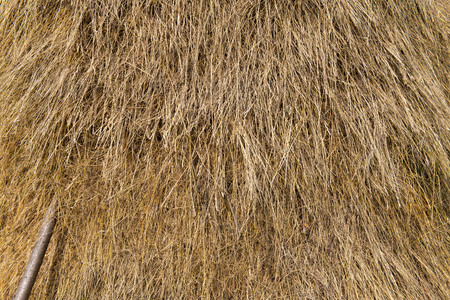 Background of loose stacked dry hay texture with wood pole. Imagens