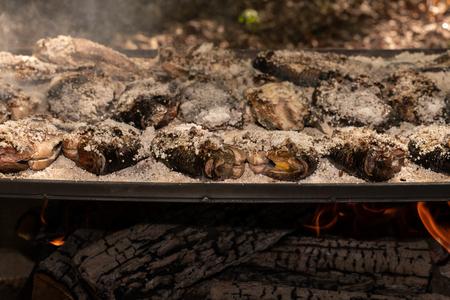 Tilapia con costra de sal cocida en una parrilla de leña con leños ardiendo debajo.