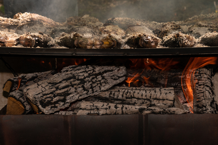 Salt crusted Tilapia fish cooked on wood grill with focus on logs burning underneath.