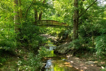 Forest landscape with a river or creek and an old arched wooden bridge.