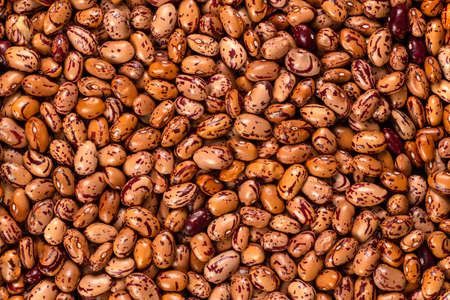 White Cargamanto beans, also known as Cranberry, Borlotti or Romano beans background and texture. Top view.