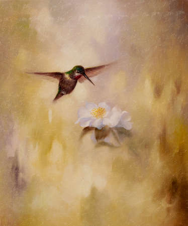 Oil painting depicting a humming bird and a white flower.