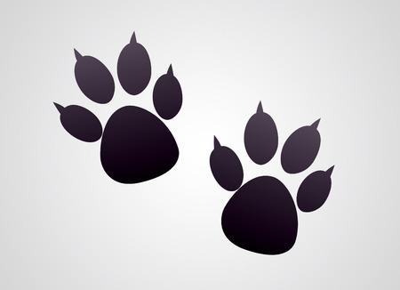 Animals footprints photo