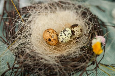 Birds nest is made of tree branches. Bird eggs lie in the nest. Handmade nest made by children, Easter crafts