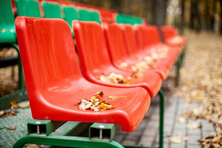 Empty sports grandstand in the leaves in the fall. Yellow leaves lie on a seat of a tribune. Plastic seats required are covered with tree foliage in the fall.