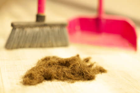 Human hair after cutting on the floor of a barber shop. Hairdresser sweeping hair clippings on floor in beauty salon.