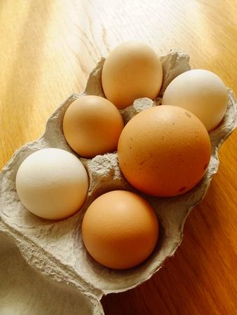 outsider: Free Range Eggs Stock Photo