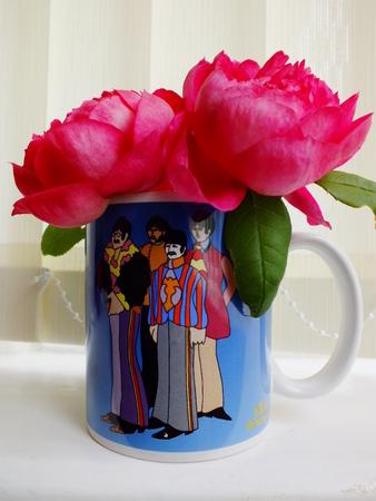 paul: roses in a beatles mug
