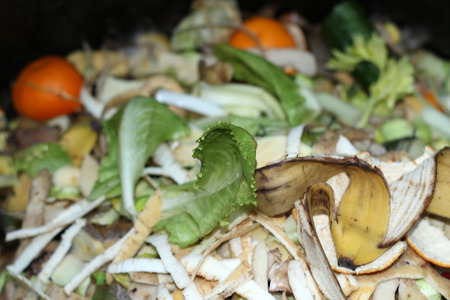 resourceful: compost in a compost bin