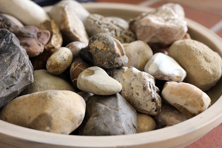 Stone and fossil collection