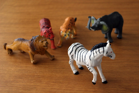 Plastic toy animals depicting a chase Фото со стока