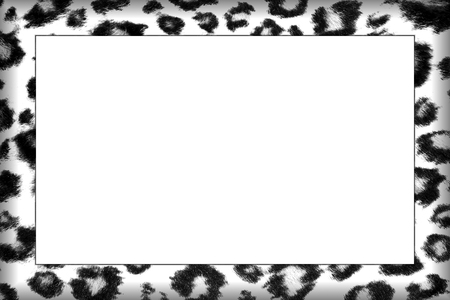 Black and White Leopard Skin Patterned Frame