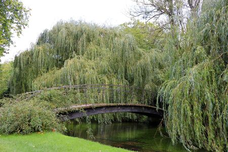 A bridge over a river surrounded by weeping willow trees