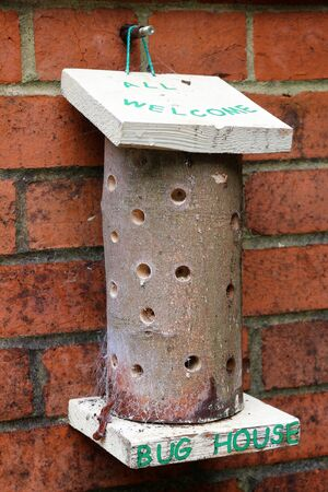 Bug House. A small insect hotel hanging on an outside wall
