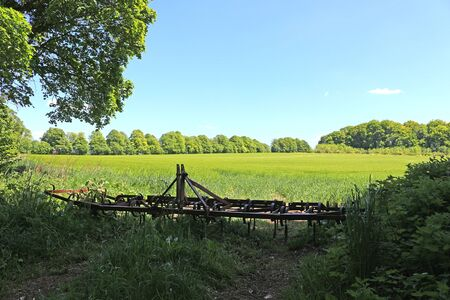 A green field with a plough in the foreground