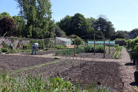 Volunteers working in the vegetable garden at Hinton Ampner.