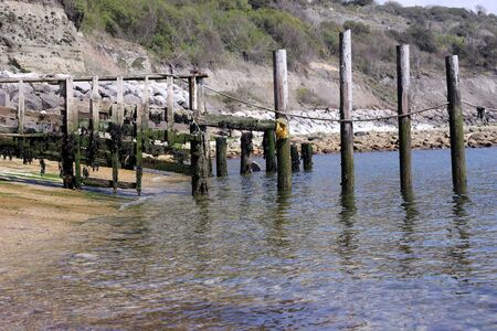 Weathered wooden poles in the water at a rocky cove