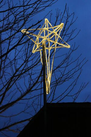 Outdoor Illuminated Christmas Star Decoration in a Tree
