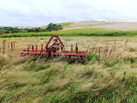 A red plough in a meadow with long grass