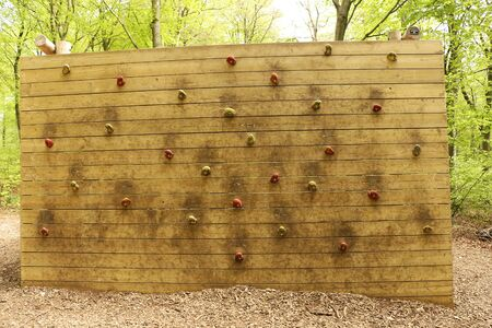 Outdoor Wooden Climbing Wall in a Forest