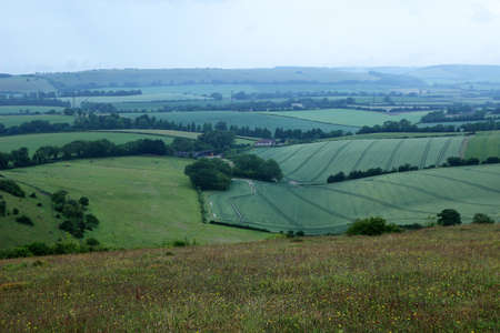 A patchwork of fields in the South Downs National Park