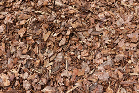 Close up of wood chip on the ground