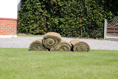 stacked rolls of lawn turf on the grass in a garden Фото со стока