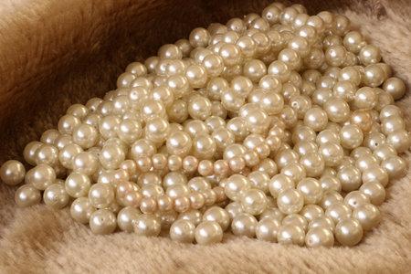 White pearls on fur background Фото со стока