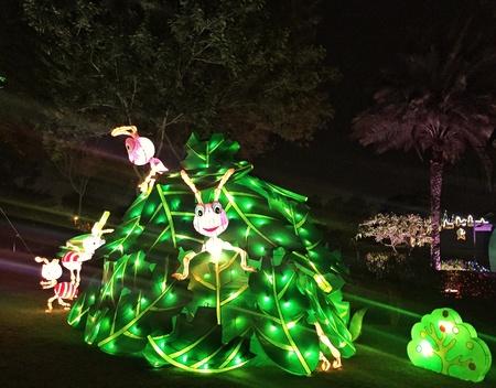 glow: Dubai Glow Park - Glowing Ants!!