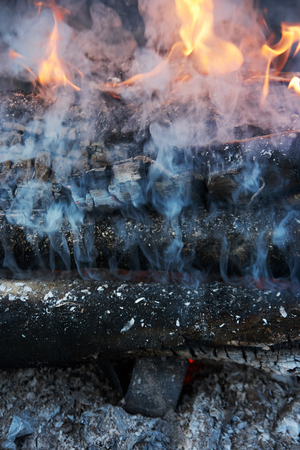 charred logs in the fire. Fire in the open air, close-up